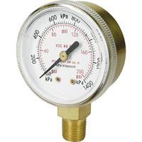 Brass Gauges NT616 | Johnston Equipment